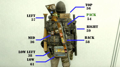 Wasteland Tactical - Visible Weapons on Packs