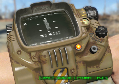PipBoy02 before
