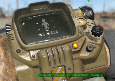 PipBoy02 after
