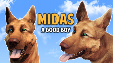Dogmeat Retextured - Midas