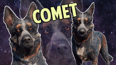 Dogmeat Retextured - Comet