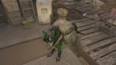 Mutated Wolf Dogmeat - Glowing - Red - Black