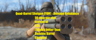 Quad-Barrel Shotgun (FOM) - Damage Rebalance