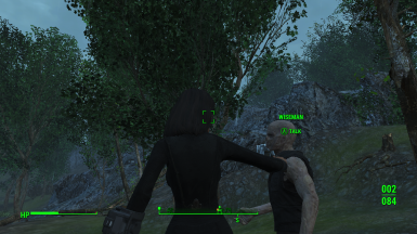 Stealthy Takedowns at Fallout 4 Nexus - Mods and community