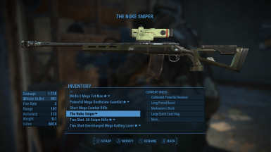 The Nuke Rifle
