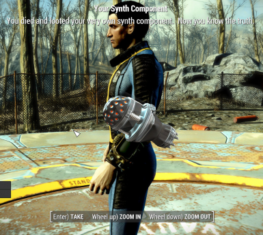 The Sole Survivor is a Synth