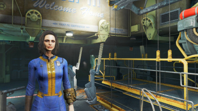 Fallout4 - Tier1 New Game Save Assets.