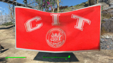 Optional CIT replacement Flag