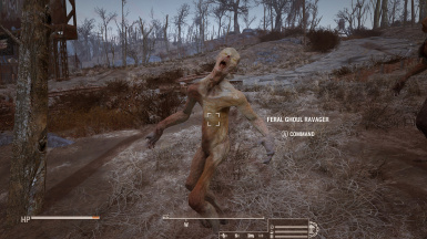 Rank 5- Feral Ghoul Ravager