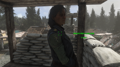 Whats Your Name at Fallout 4 Nexus - Mods and community