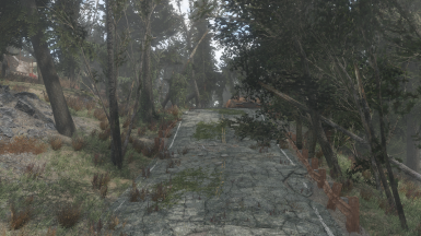 Road to the station