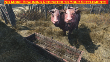 No More Brahmin Recruitment In New Settlements