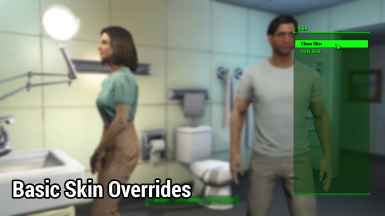 Basic Skin Overrides - Clean or Dirty