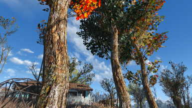new version with living trees retexture