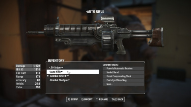 Assault Rifle top mods and perks