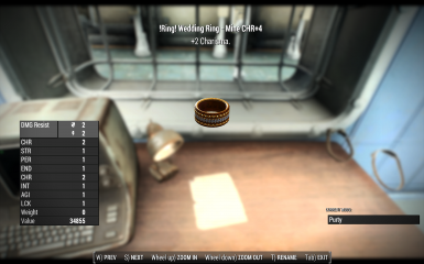 Fallout 4 Wedding Ring.Special Wedding Rings At Fallout 4 Nexus Mods And Community