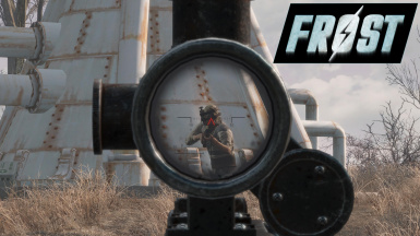 Patch - FROST and See Through Scopes (Replacer Version)