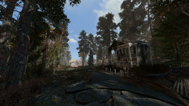 Another Pine Forest Mod