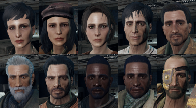 10 Companions Face Replacer