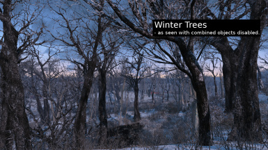 WinteryTrees03
