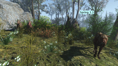 Spring3 3 Wilderness01