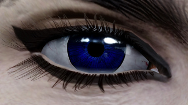 Eyes of Perfection - Fallout Edition
