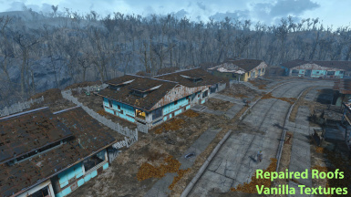 Repaired Sanctuary Roofs