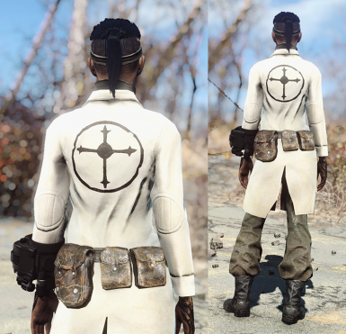 Wasteland Scientist Followers of the Apocalypse