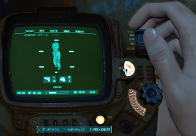Female Pipboy
