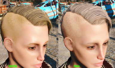 WX Hair Colors at Fallout 4 Nexus - Mods and community