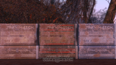 556 Ammo Boxes