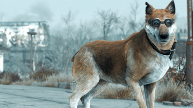 Jesters Dogemeat textures on Mutt