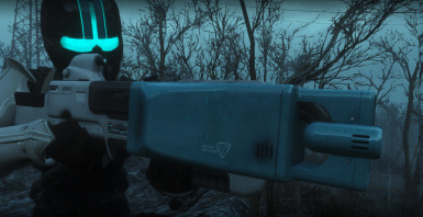 I think this is the auto barrel