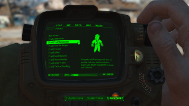 Traits in the Pip-Boy