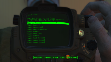 Trait Terminal on the Pip-Boy
