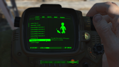 Perks in the Pip-Boy