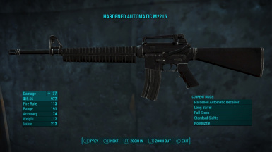 The M2216 Standalone Assault Rifle
