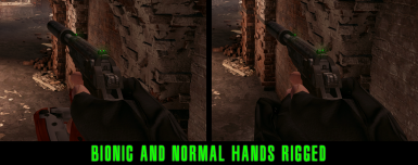First Person Hands