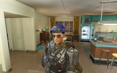 1e580b3c1e7b3 Faction Berets - Represent Your Side at Fallout 4 Nexus - Mods and ...