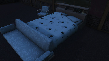 New bed and chairs