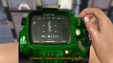 Mary Jane Edition Pip Boy