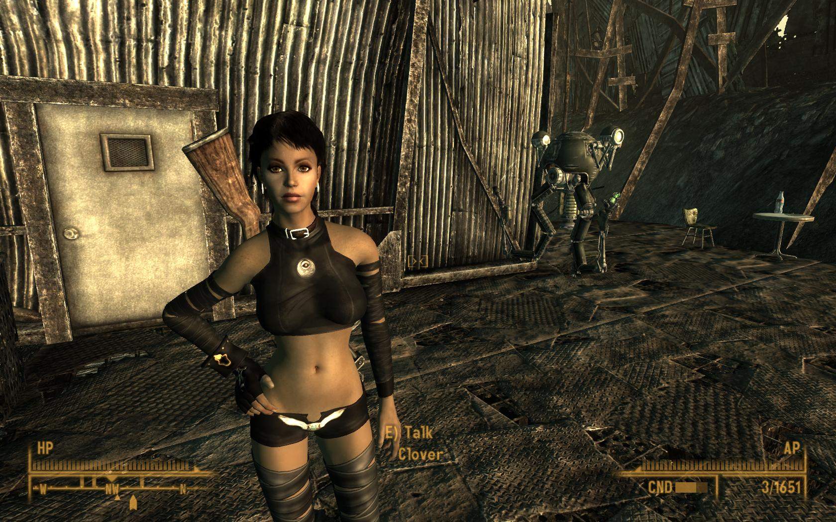 Fallout 3 hot sex sexual pics