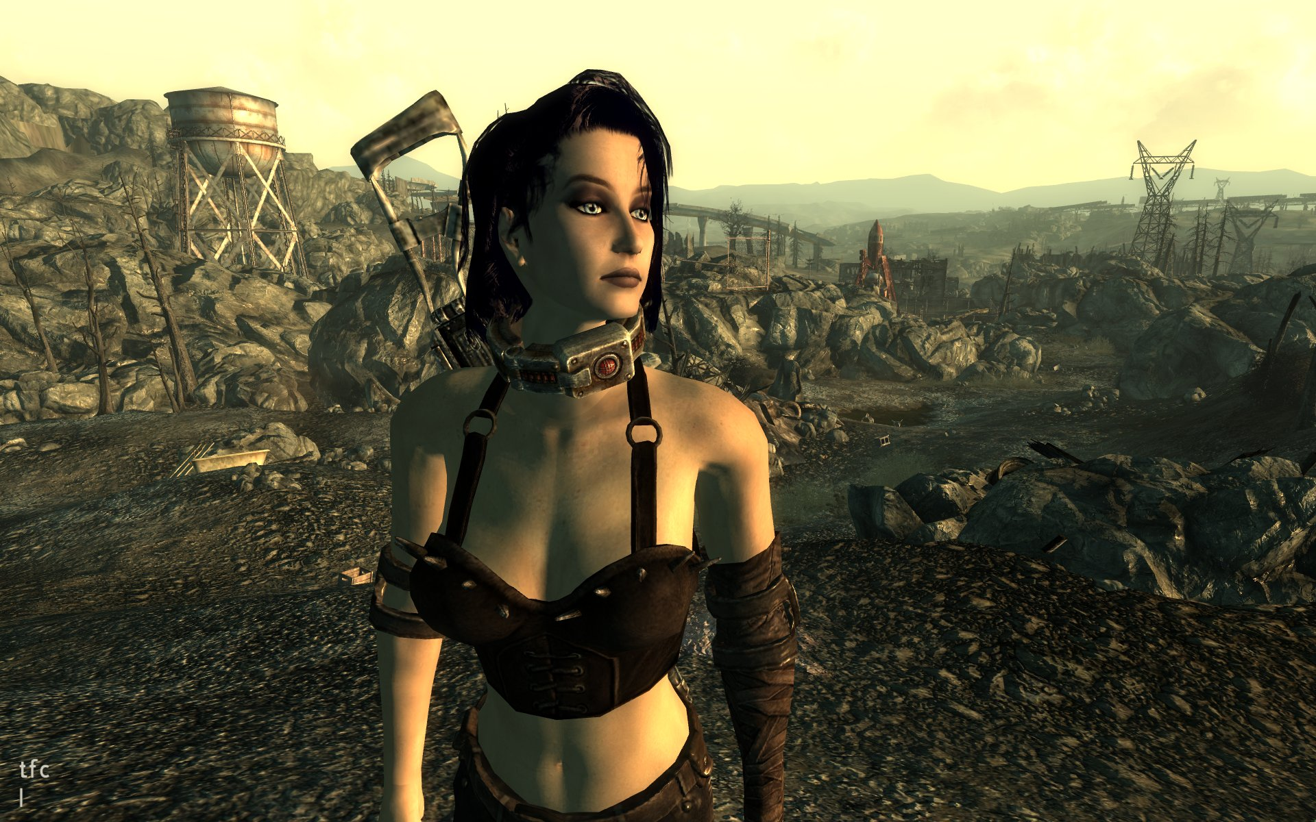 Fallout 3 brianna naked pron gallery