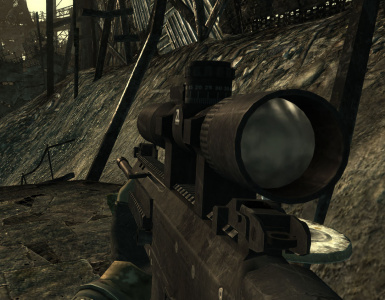 ACR  DMR Scoped 1st Person