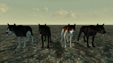 Dogs 2 - WatersMoon110