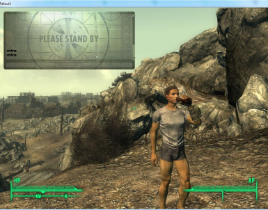 Fallout 3 Coop Mod
