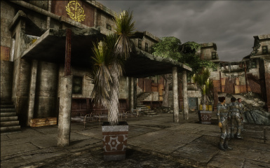Forested Courtyard 1