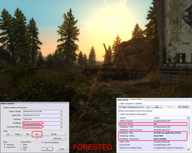 Antialiasing and Anisotropic Filtering - good settings