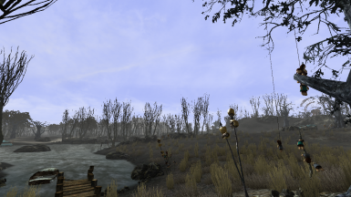 Swamps of Point Lookout