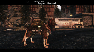 Its a Dogs World - Dogmeat Overhaul